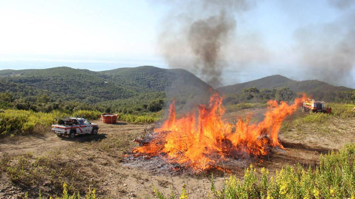 Antincendio Boschivo (AIB): dal 1° Luglio inizia il periodo ad Alta Operatività
