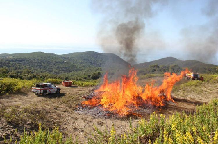 """Caldo in arrivo: la Regione Toscana anticipa la stagione """"rovente"""" per le squadre AIB (antincendio boschivo) della Misericordia di Montenero"""