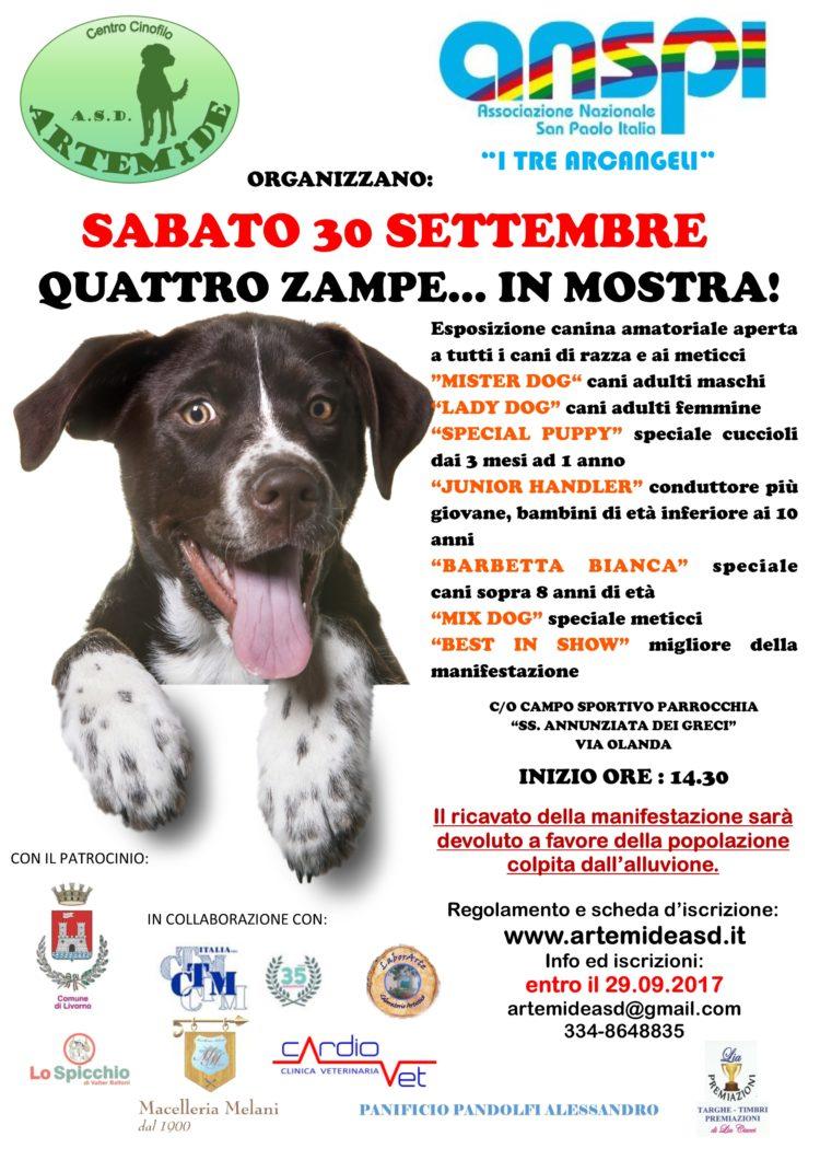 Sabato 30 Settembre, 4 zampe in MOSTRA,  Evento di Beneficenza, Campo Sportivo via Olanda, dalle 14.30