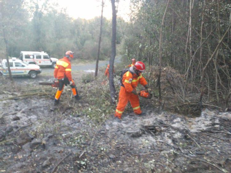 Incendio boschivo a Riparbella: la sezione AIB della Misericordia di Montenero interviene con due squadre